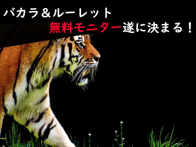 バカラ&ルーレット最新攻略法!無料モニター当選発表!
